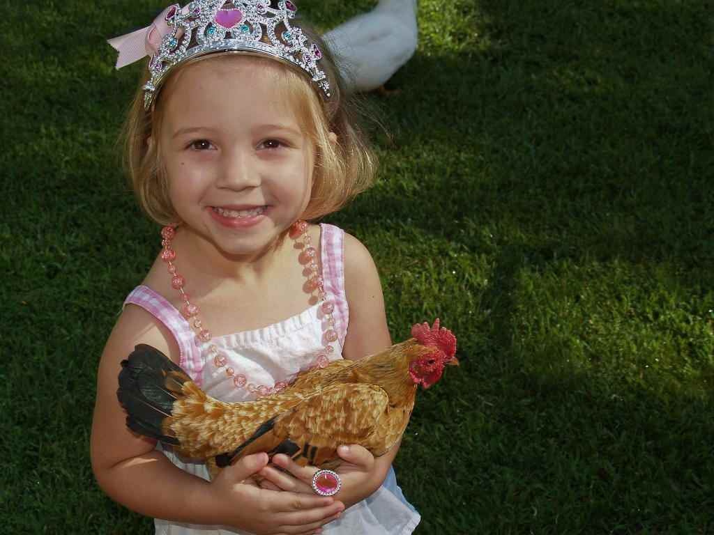 Chattanooga TN Phone 423 580 1233 Birthday Parties Church Events Fund Raisers